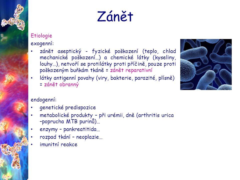 Zánět Etiologie exogenní: zánět aseptický - fyzické poškození (teplo, chlad mechanické poškození…) a chemické látky (kyseliny, louhy…), netvoří se protilátky proti příčině, pouze proti poškozeným buňkám tkáně = zánět reparativní látky antigenní povahy (viry, bakterie, parazité, plísně) = zánět obranný endogenní: genetické predispozice metabolické produkty – při urémii, dně (arthritis urica –poprucha MTB purinů)… enzymy – pankreatitida… rozpad tkání – neoplazie… imunitní reakce