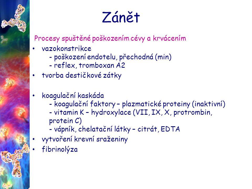 Zánět Procesy spuštěné poškozením cévy a krvácením vazokonstrikce - poškození endotelu, přechodná (min) - reflex, tromboxan A2 tvorba destičkové zátky koagulační kaskáda - koagulační faktory – plazmatické proteiny (inaktivní) - vitamin K – hydroxylace (VII, IX, X, protrombin, protein C) - vápník, chelatační látky – citrát, EDTA vytvoření krevní sraženiny fibrinolýza