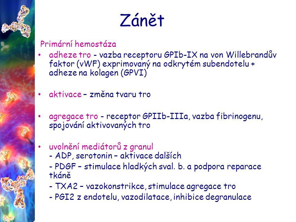 Zánět Primární hemostáza Adheze, aktivace, agregace tro a uvolnění mediátorů z granul
