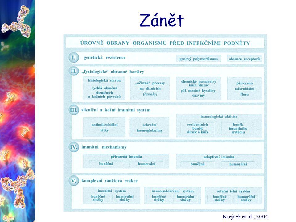 Zánět Krejsek et al., 2004