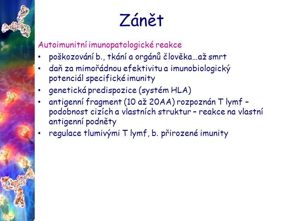 Zánět Autoimunitní imunopatologické nemoci Revmatoidní artritida Diabetes mellitus typ I.