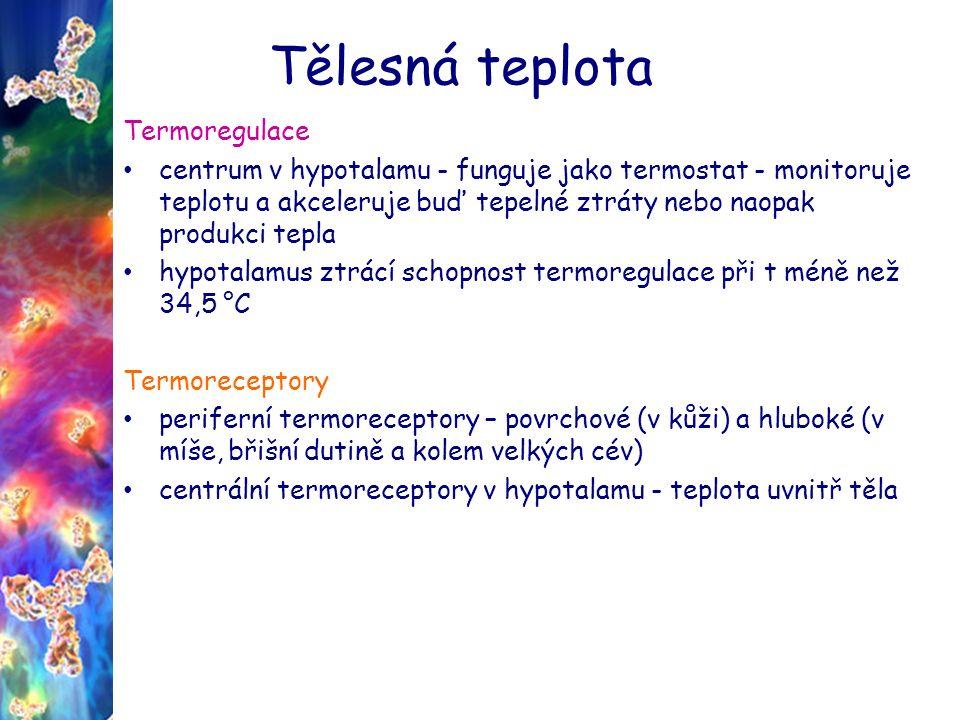 Tělesná teplota Termoregulace