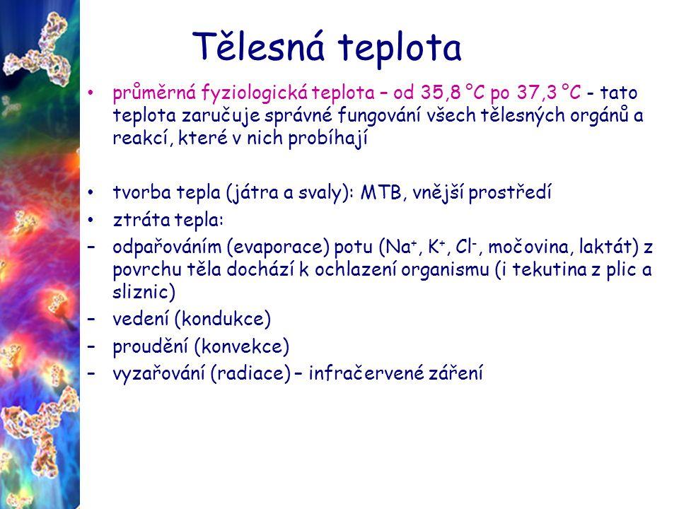 Tělesná teplota průměrná fyziologická teplota – od 35,8 °C po 37,3 °C - tato teplota zaručuje správné fungování všech tělesných orgánů a reakcí, které v nich probíhají tvorba tepla (játra a svaly): MTB, vnější prostředí ztráta tepla: –odpařováním (evaporace) potu (Na +, K +, Cl -, močovina, laktát) z povrchu těla dochází k ochlazení organismu (i tekutina z plic a sliznic) –vedení (kondukce) –proudění (konvekce) –vyzařování (radiace) – infračervené záření