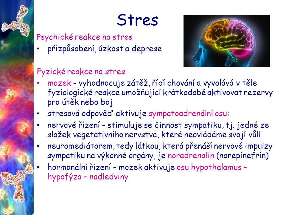 Stres Psychické reakce na stres přizpůsobení, úzkost a deprese Fyzické reakce na stres mozek - vyhodnocuje zátěž, řídí chování a vyvolává v těle fyziologické reakce umožňující krátkodobě aktivovat rezervy pro útěk nebo boj stresová odpověď aktivuje sympatoadrenální osu: nervové řízení - stimuluje se činnost sympatiku, tj.
