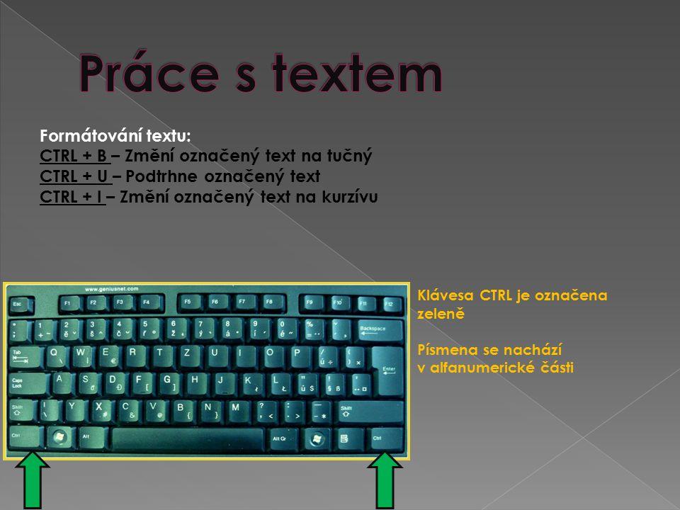 CTRL + Kurzorové klávesy (šipky) vlevo a vpravo – Posouvání kurzoru v textu po slovech CTRL + Kurzorové klávesy (šipky) nahoru a dolů – Přesune kurzor na začátek předchozího nebo následujícího odstavce.
