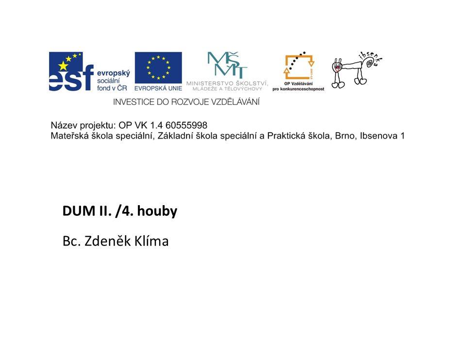 DUM II. /4. houby Bc. Zdeněk Klíma