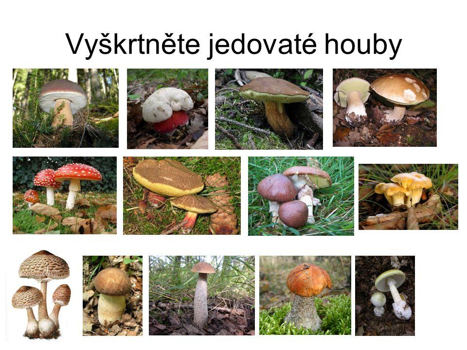 Vyškrtněte jedovaté houby