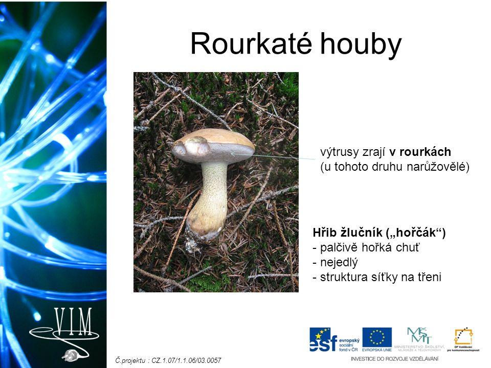 """Č.projektu : CZ.1.07/1.1.06/03.0057 Rourkaté houby výtrusy zrají v rourkách (u tohoto druhu narůžovělé) Hřib žlučník (""""hořčák ) - palčivě hořká chuť - nejedlý - struktura síťky na třeni"""