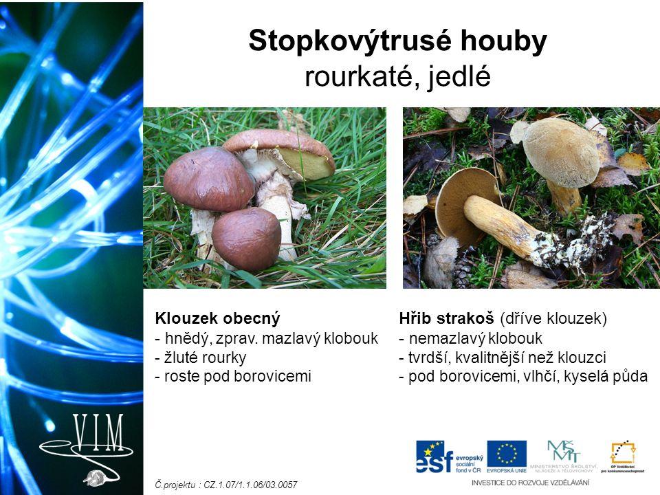 Č.projektu : CZ.1.07/1.1.06/03.0057 Stopkovýtrusé houby rourkaté, jedlé Klouzek obecný - hnědý, zprav.