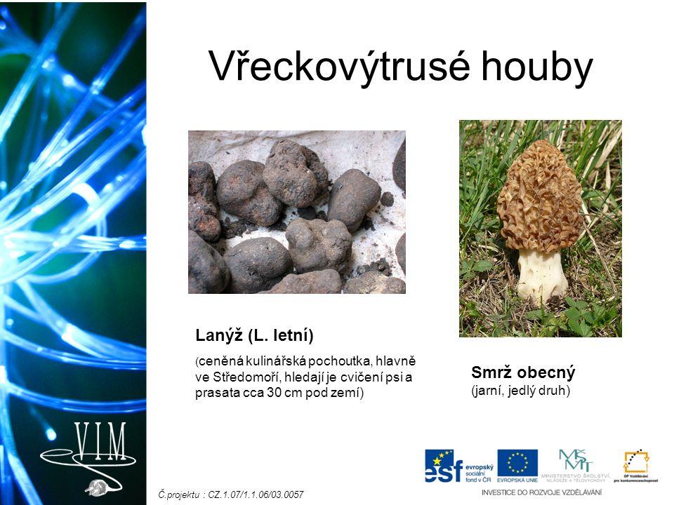 Č.projektu : CZ.1.07/1.1.06/03.0057 Vřeckovýtrusé houby Smrž obecný (jarní, jedlý druh) Lanýž (L.