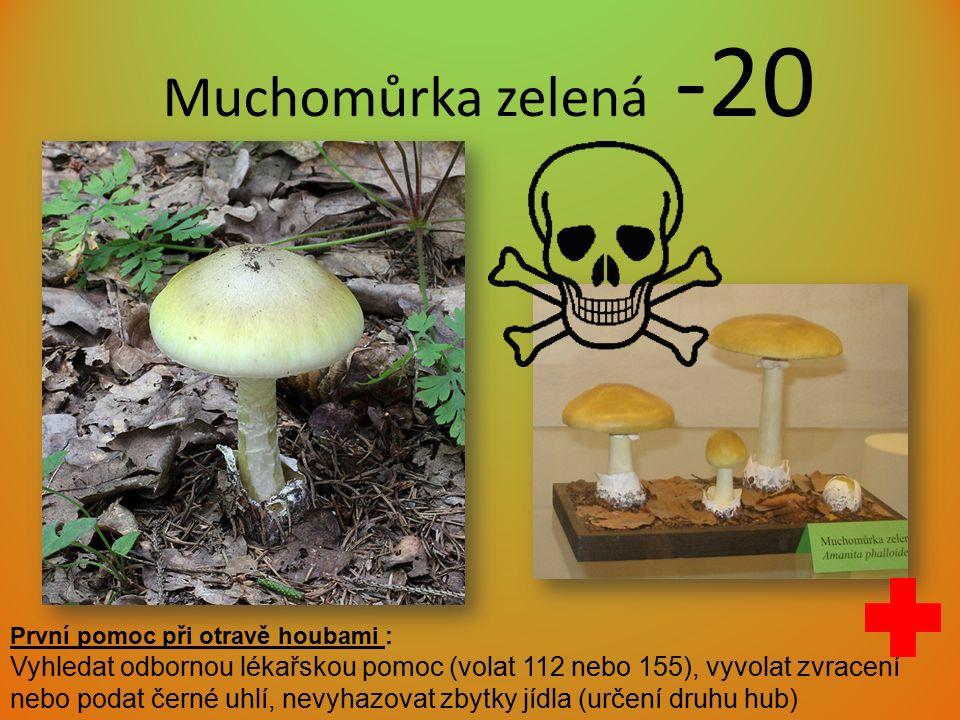 Muchomůrka zelená -20 První pomoc při otravě houbami : Vyhledat odbornou lékařskou pomoc (volat 112 nebo 155), vyvolat zvracení nebo podat černé uhlí, nevyhazovat zbytky jídla (určení druhu hub)