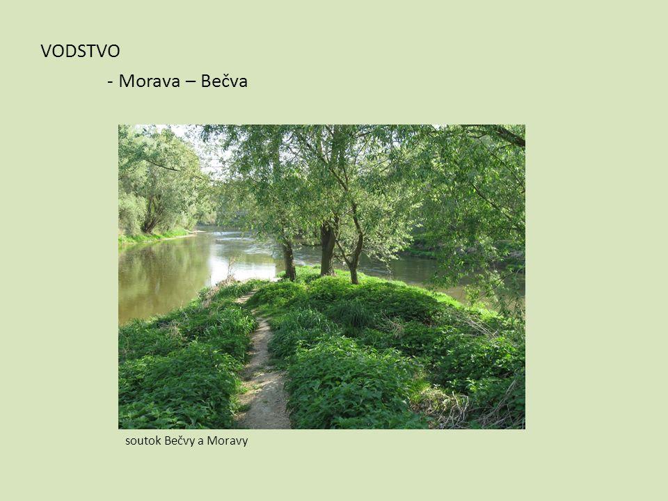 VODSTVO - Morava – Bečva soutok Bečvy a Moravy