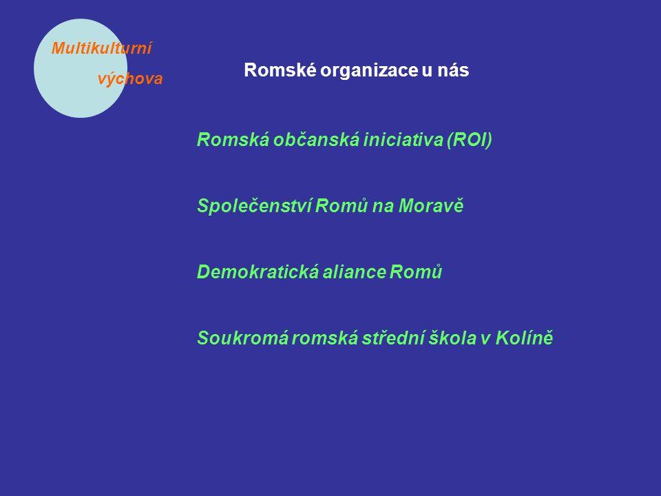Multikulturní výchova Romské organizace u nás Romská občanská iniciativa (ROI) Společenství Romů na Moravě Demokratická aliance Romů Soukromá romská střední škola v Kolíně