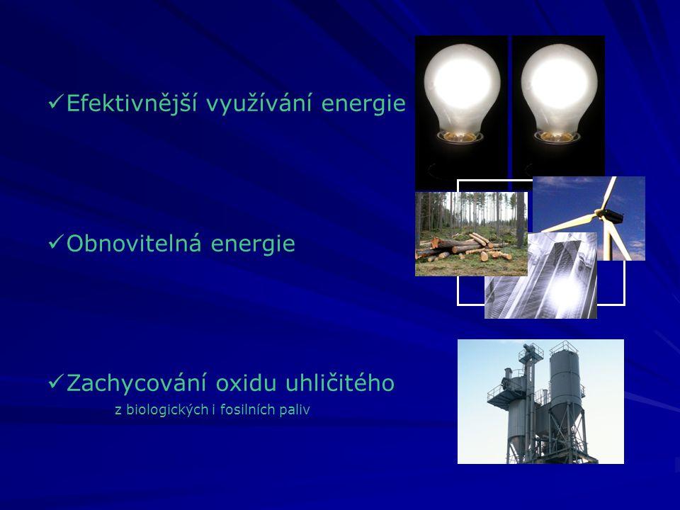 Efektivnější využívání energie Obnovitelná energie Zachycování oxidu uhličitého z biologických i fosilních paliv