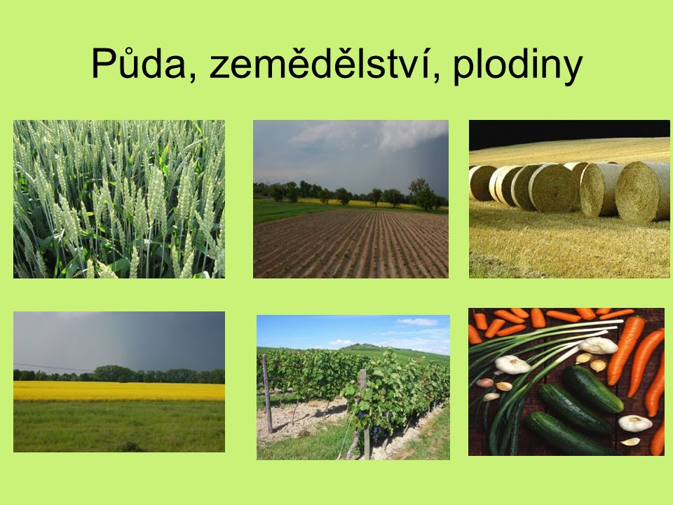 Půda, zemědělství, plodiny