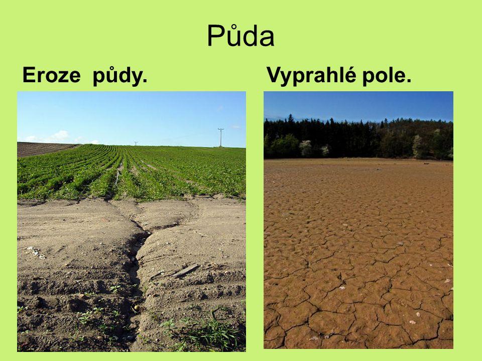 Půda Eroze půdy. Vyprahlé pole.