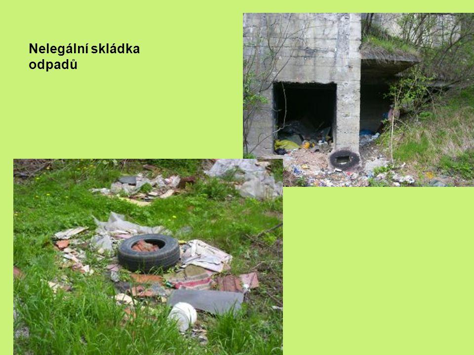 Nelegální skládka odpadů Odpad v přírodě Malá černá skládka odpadů