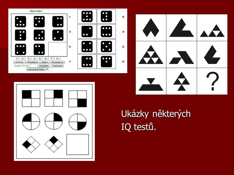 Ukázky některých IQ testů.