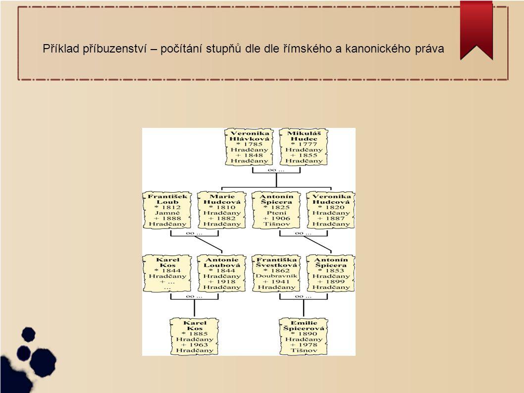 Příklad příbuzenství – počítání stupňů dle dle římského a kanonického práva
