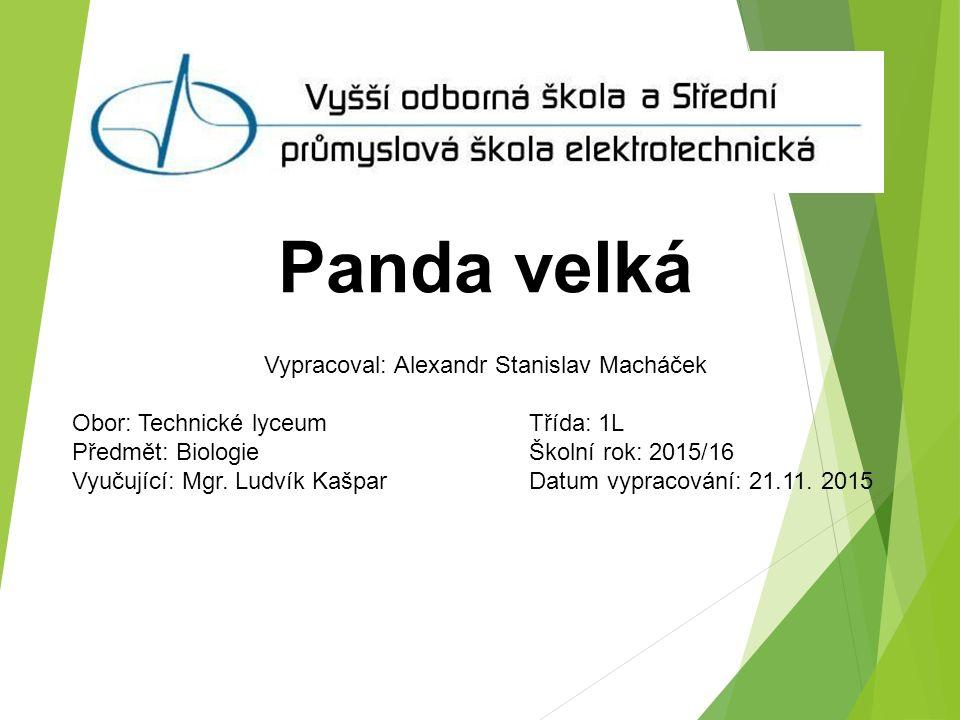 Panda velká Vypracoval: Alexandr Stanislav Macháček Obor: Technické lyceum Třída: 1L Předmět: Biologie Školní rok: 2015/16 Vyučující: Mgr.