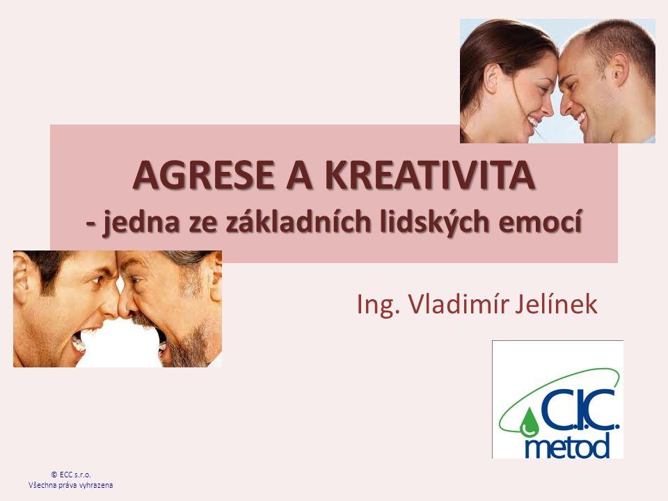 AGRESE A KREATIVITA - jedna ze základních lidských emocí Ing.