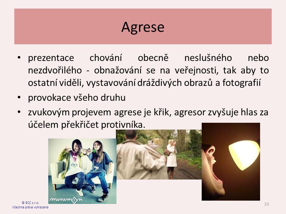 Agrese prezentace chování obecně neslušného nebo nezdvořilého - obnažování se na veřejnosti, tak aby to ostatní viděli, vystavování dráždivých obrazů a fotografií provokace všeho druhu zvukovým projevem agrese je křik, agresor zvyšuje hlas za účelem překřičet protivníka.