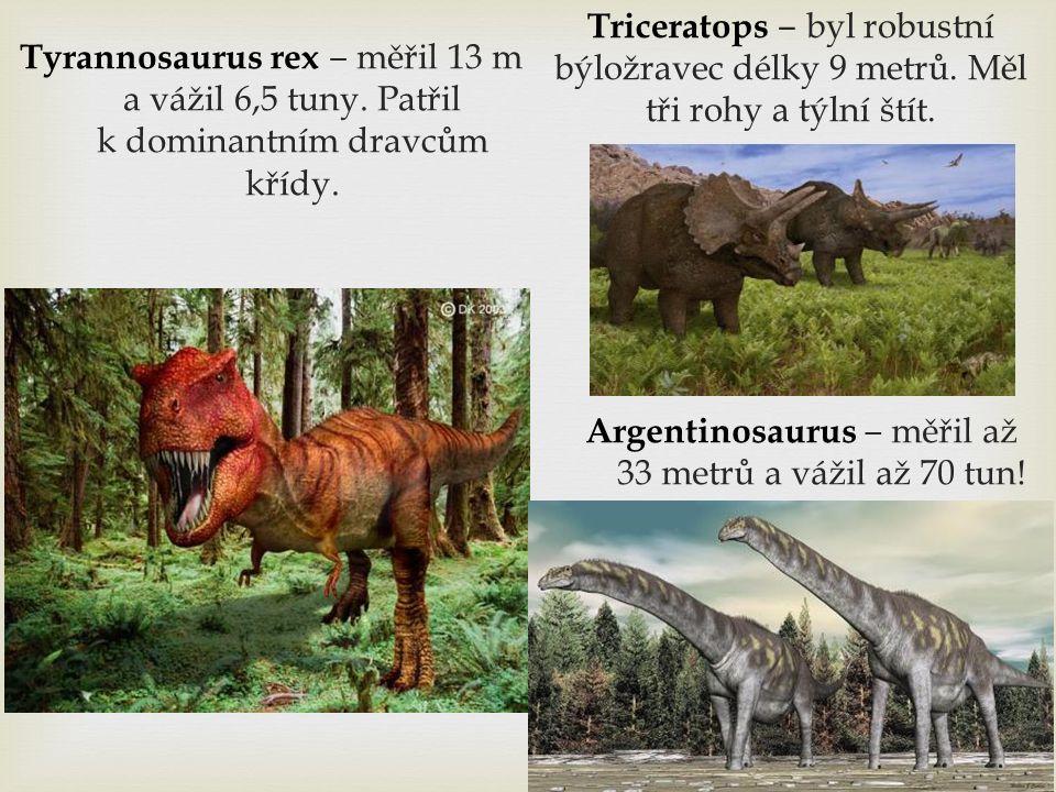 Tyrannosaurus rex ‒ měřil 13 m a vážil 6,5 tuny.Patřil k dominantním dravcům křídy.