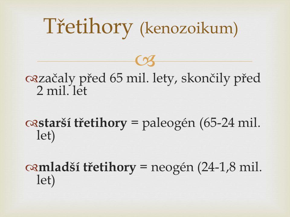 Třetihory (kenozoikum)  začaly před 65 mil. lety, skončily před 2 mil. let  starší třetihory = paleogén (65-24 mil. let)  mladší třetihory = neog