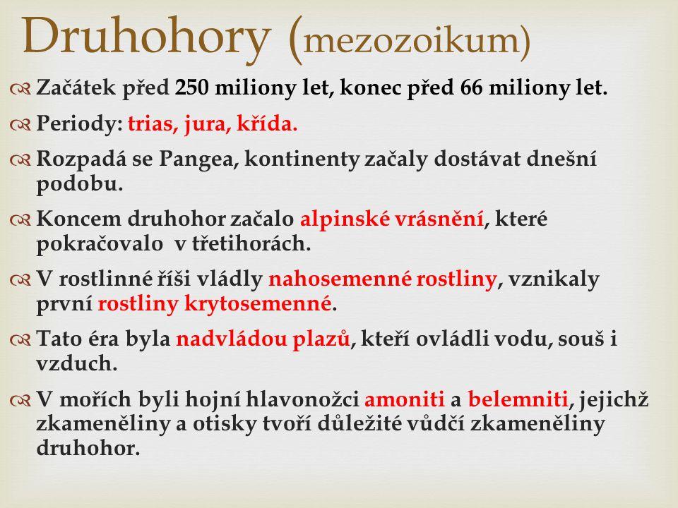 Druhohory ( mezozoikum)  Začátek před 250 miliony let, konec před 66 miliony let.  Periody: trias, jura, křída.  Rozpadá se Pangea, kontinenty zača