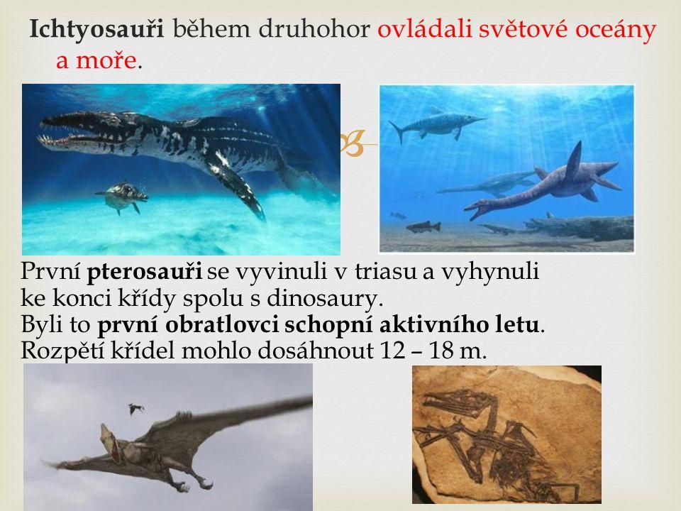  Ichtyosauři během druhohor ovládali světové oceány a moře. První pterosauři se vyvinuli v triasu a vyhynuli ke konci křídy spolu s dinosaury. Byli t