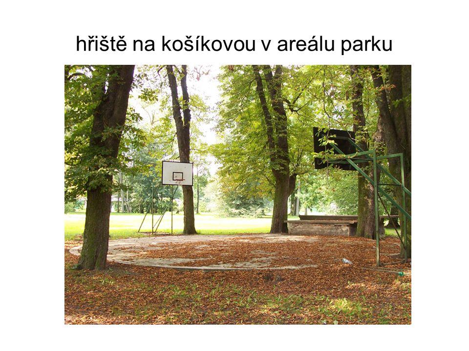 hřiště na košíkovou v areálu parku