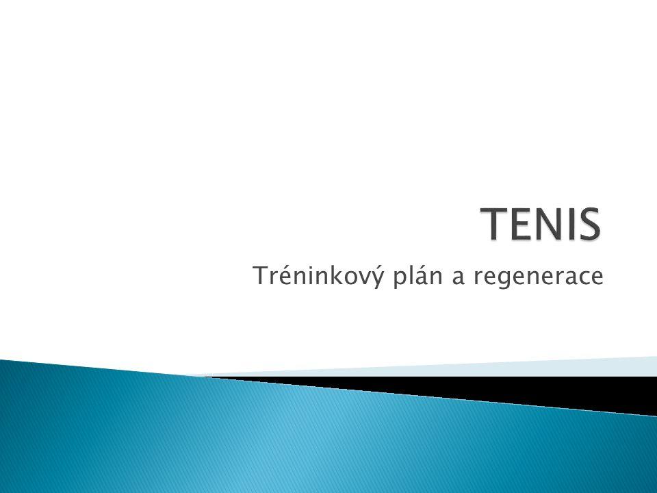  tenisový trénink 5x týdně  individuálně s trenérem……… 2h/týden  regenerace,masáž,plavání………..