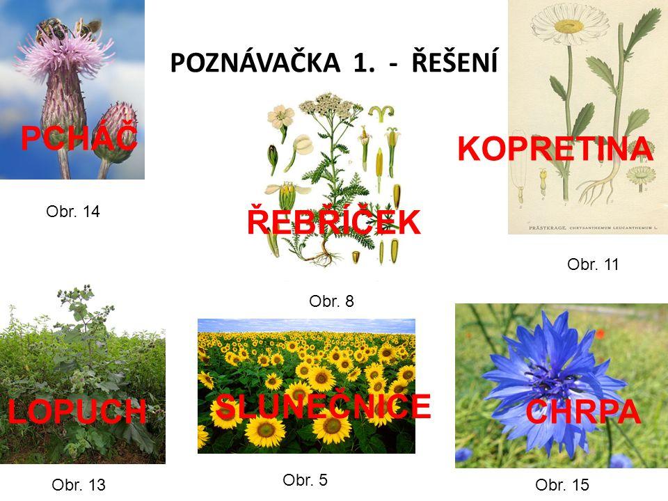 POZNÁVAČKA 1. - ŘEŠENÍ Obr. 5 Obr. 8 Obr. 11 Obr.