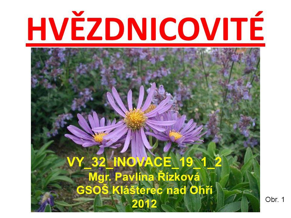 HVĚZDNICOVITÉ Obr. 1 VY_32_INOVACE_19_1_2 Mgr. Pavlína Řízková GSOŠ Klášterec nad Ohří 2012