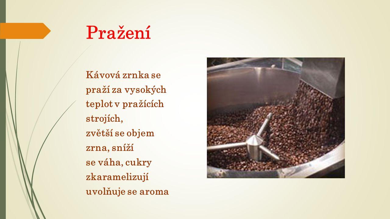 Pražení Kávová zrnka se praží za vysokých teplot v pražících strojích, zvětší se objem zrna, sníží se váha, cukry zkaramelizují uvolňuje se aroma
