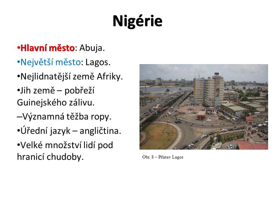 Nigérie Hlavní město Hlavní město: Abuja. Největší město: Lagos. Nejlidnatější země Afriky. Jih země – pobřeží Guinejského zálivu. – Významná těžba ro