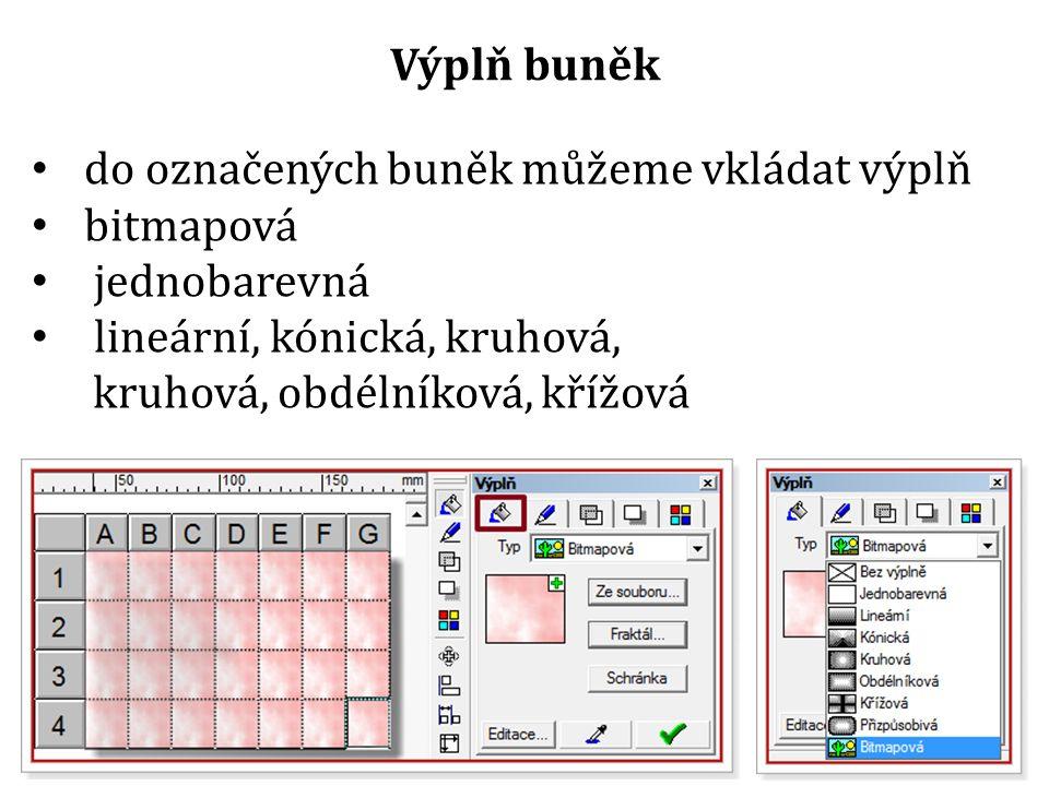 do označených buněk můžeme vkládat výplň bitmapová jednobarevná lineární, kónická, kruhová, kruhová, obdélníková, křížová Výplň buněk