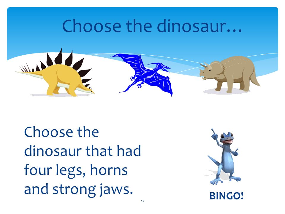12 Choose the dinosaur… Choose the dinosaur that had four legs, horns and strong jaws. BINGO!
