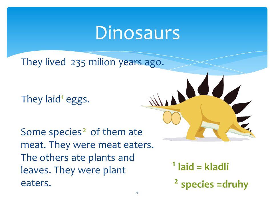 15 Choose the dinosaur… Choose the dinosaur that had four legs, long claws and no horns. BINGO!
