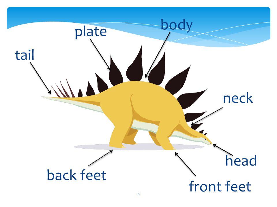 7 teeth claws back leg neck jaw toe