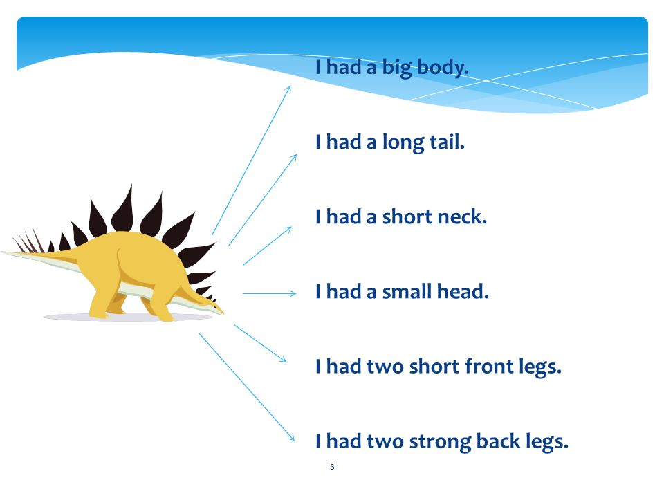 8 I had a big body. I had a long tail. I had a short neck.