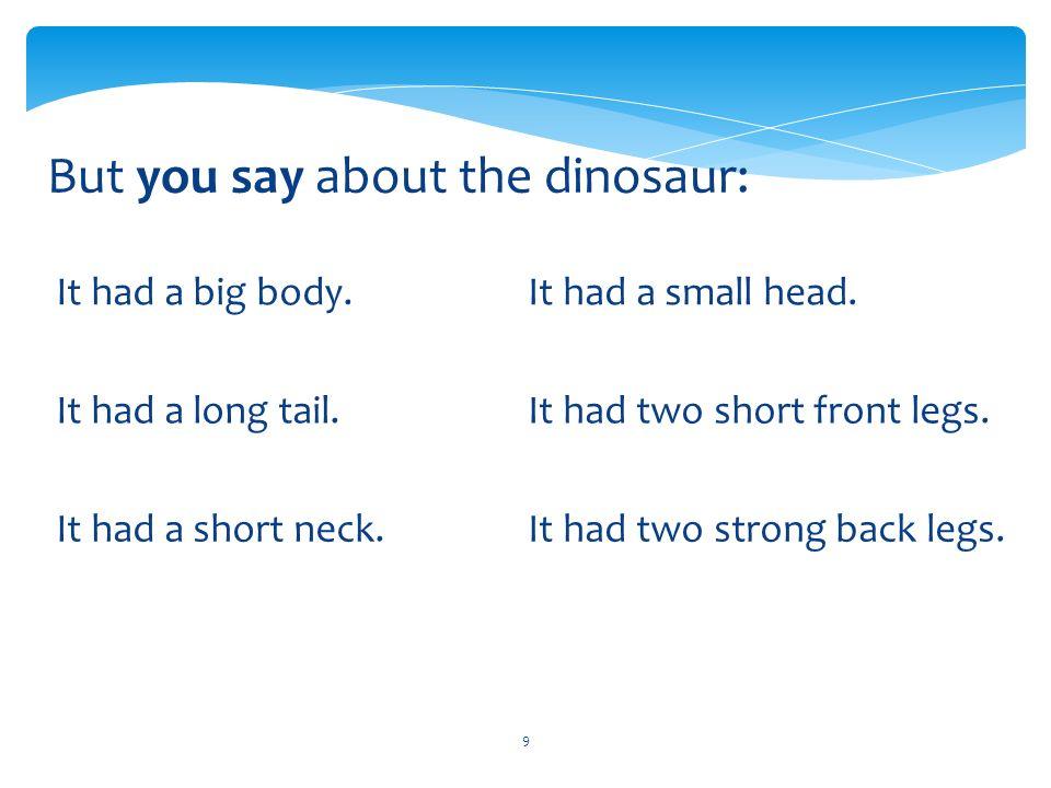 10 Choose the dinosaur… Choose the dinosaur that had wings, long tail and short legs. BINGO!