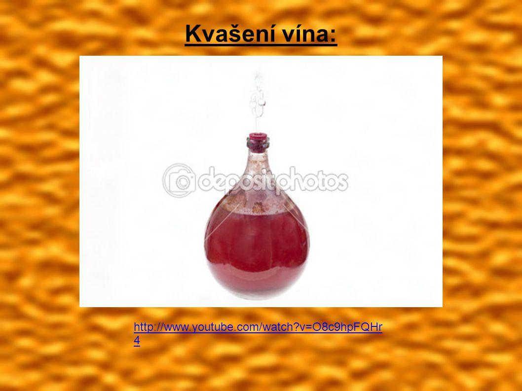 Kvašení vína: http://www.youtube.com/watch v=O8c9hpFQHr 4