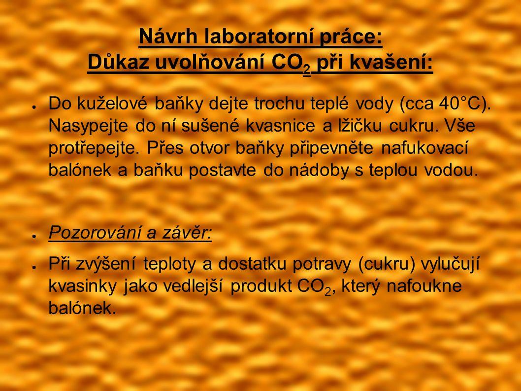 Návrh laboratorní práce: Důkaz uvolňování CO 2 při kvašení: ● Do kuželové baňky dejte trochu teplé vody (cca 40°C).