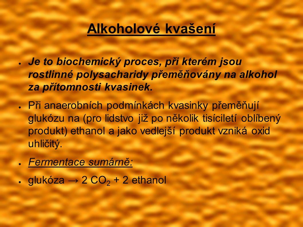 Alkoholové kvašení ● Je to biochemický proces, při kterém jsou rostlinné polysacharidy přeměňovány na alkohol za přítomnosti kvasinek.
