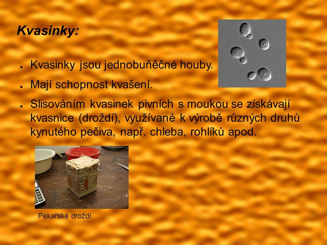 Kvasinky: ● Kvasinky jsou jednobuňěčné houby. ● Mají schopnost kvašení.