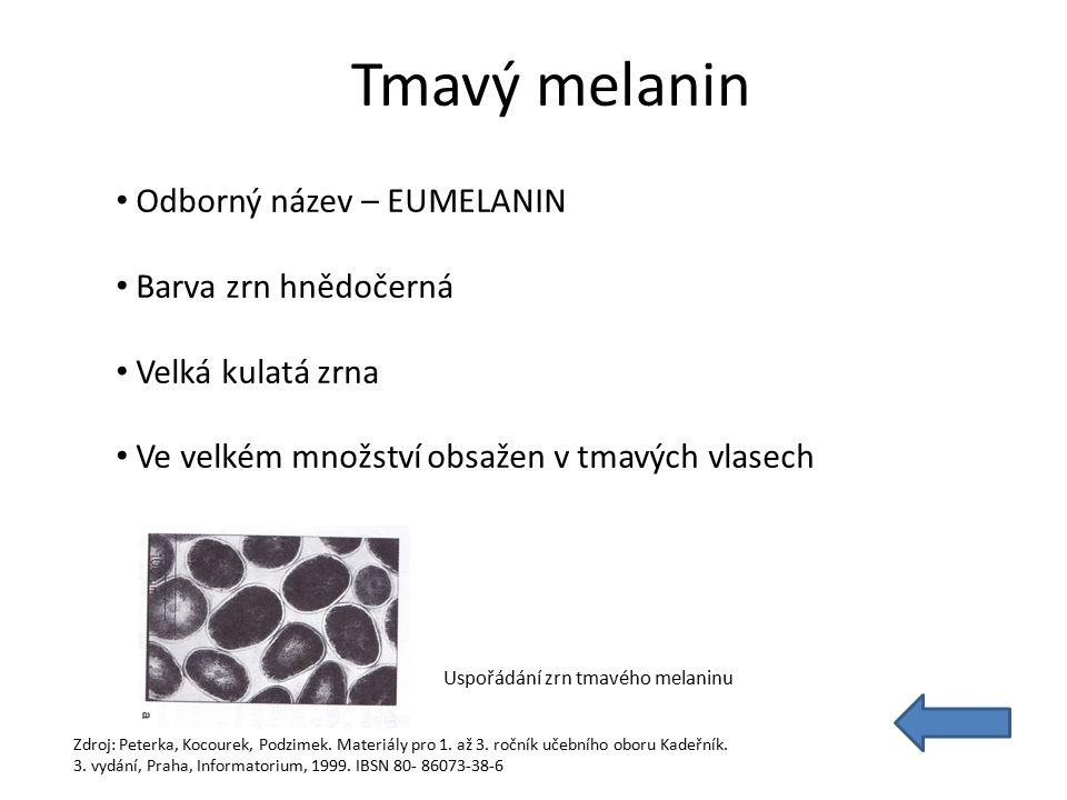Tmavý melanin Odborný název – EUMELANIN Barva zrn hnědočerná Velká kulatá zrna Ve velkém množství obsažen v tmavých vlasech Uspořádání zrn tmavého melaninu Zdroj: Peterka, Kocourek, Podzimek.