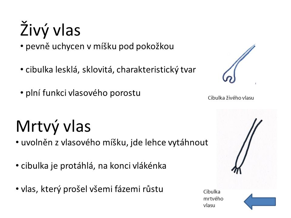 Použitá literatura: Peterka, Kocourek, Podzimek.Materiály pro 1.