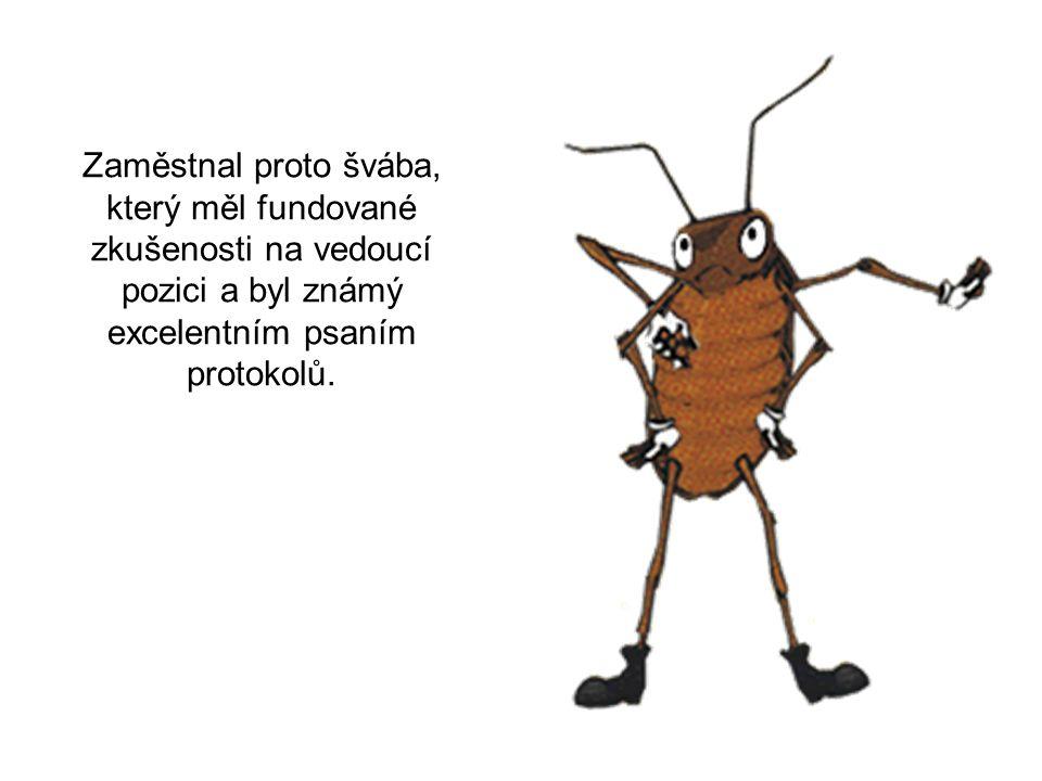 ... a uvažoval, o kolik bude mravenec produktivnější pod dohledem, když už bez dohledu tak dobře pracuje!