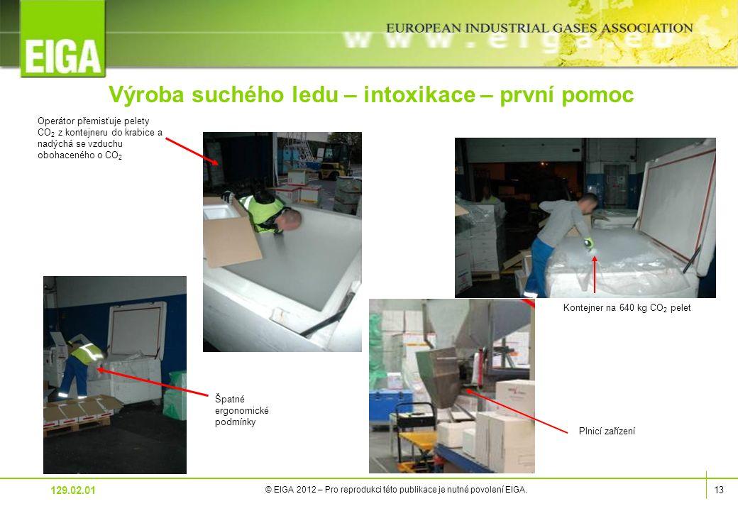 13 © EIGA 2012 – Pro reprodukci této publikace je nutné povolení EIGA.